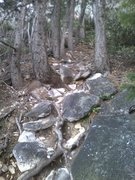Rock Climbing Photo: Looking up the climbers trail to Six Toe from the ...