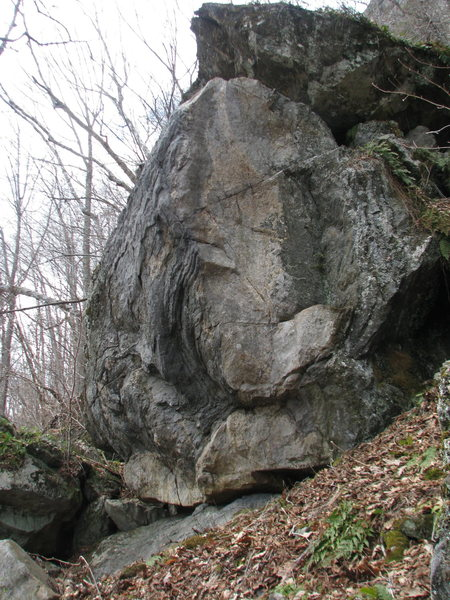 The Good and Evil Arete