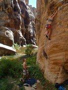Rock Climbing Photo: Hasbro, Windslow wall