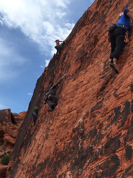 Panty Wall Red Rock NV