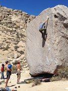 Rock Climbing Photo: Glen Deal, looking solid