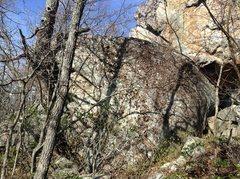 Rock Climbing Photo: Old Tree Boulder in Ridge Boulders Area. Easily id...