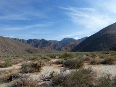 Rock Climbing Photo: Looking into Sheep Canyon, Anza Borrego SP
