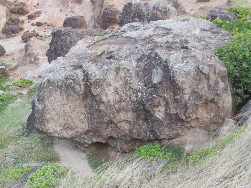 "The west face of Caudal Peduncle Boulder, with ""Lip Syn Battle"" on the left, above the sandy landing."