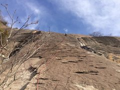 Rock Climbing Photo: Pitch 2 of the Enigma; amazing friction! Also, the...
