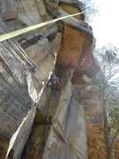 Rock Climbing Photo: Cleaning a route at Star Mountain, TN
