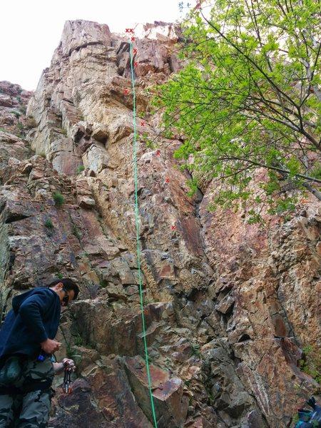 Rock Climbing Photo: Day as Night beta.