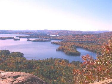 Fall here
