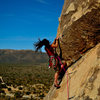 Cyndi Chebator on the lead.  Photo Credit Joe Comeau