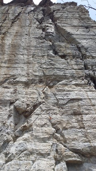 Rock Climbing Photo: Silencer is the leftmost route with draws hung on ...