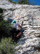 Rock Climbing Photo: Bushies on the left of Licor de Lagarto