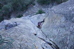 Rock Climbing Photo: Voyager- fifi buttress