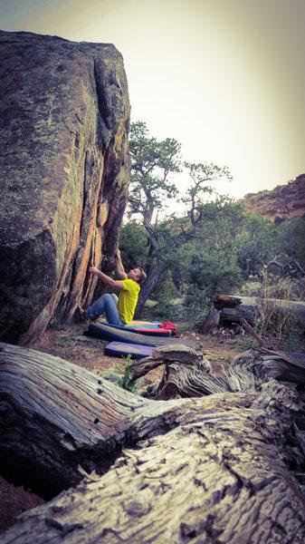 Rock Climbing Photo: Start beta of Anthesis.