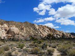 Rock Climbing Photo: Herman Rock from the trail, Joshua Tree NP