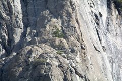 Random climbers on 4/19/15. Let me know if you recognize yourself, I have more.