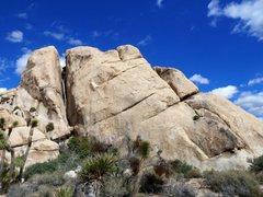 Rock Climbing Photo: Deja Vu Pinnacle, Joshua Tree NP