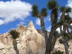 Rock Climbing Photo: Cerro Torre Tower, Joshua Tree NP