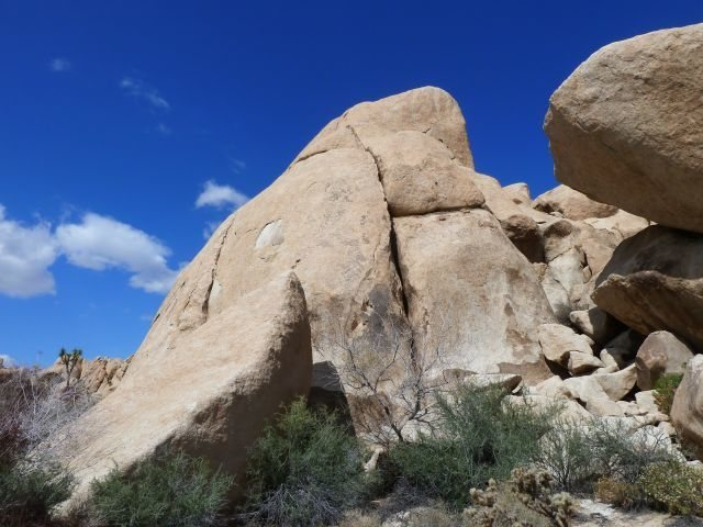 Rock Climbing Photo: Riddle of the Sphinx (5.4), Joshua Tree NP