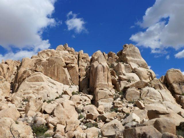 Rock Climbing Photo: Box Canyon Area, Joshua Tree NP