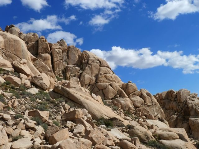 The Comic Strip (North Face), Joshua Tree NP
