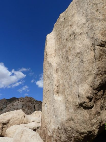Rock Climbing Photo: A closer look at the angle of T-N-T (5.10c), Joshu...