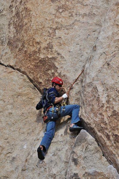 Rock Climbing Photo: Cleaning gear on Double Cross (5.7), JTree.