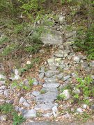 Rock Climbing Photo: Shockley's approach trail.  The next trail is ...