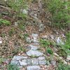 Welcome to the Gunks approach trail. The next trail is [[Minty]]110455127