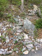 Rock Climbing Photo: Madame G's approach trail.  The next trail is ...