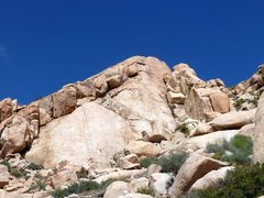 Rock Climbing Photo: Mary Worth Buttress, Joshua Tree NP