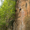 To defy laws of tradition 5.10a, Red River Gorge, KY
