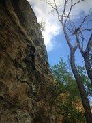 Rock Climbing Photo: Chris on Sleeping Bat.