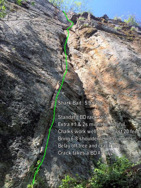 Rock Climbing Photo: Photo of Shark Bait 5.9+/10a