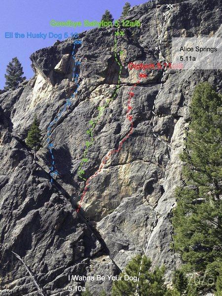 Rock Climbing Photo: Topo/Photo