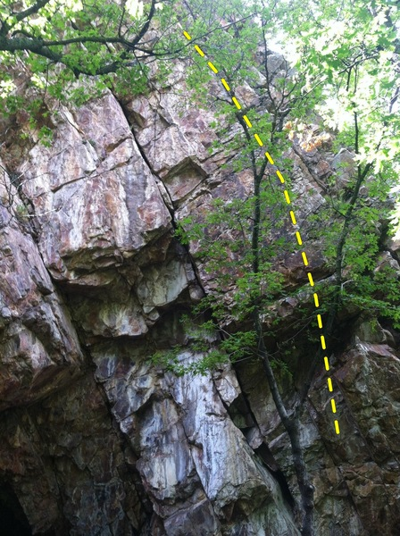 """This is the south facing """"cave"""" area on the east side of the wall where Lycra eater(5.10 hand crack in middle)is located. Bolted route goes right up behind tree."""