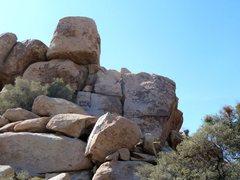 Rock Climbing Photo: Anthrax Rock, Joshua Tree NP