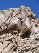 Rock Climbing Photo: Studebaker Hawk (5.10c), Joshua Tree NP