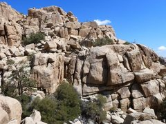Rock Climbing Photo: The north side of X Factor Dome, Joshua Tree NP