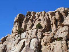 Rock Climbing Photo: The west face of X Factor Dome, Joshua Tree NP