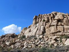 Rock Climbing Photo: X Factor Dome, Joshua Tree NP