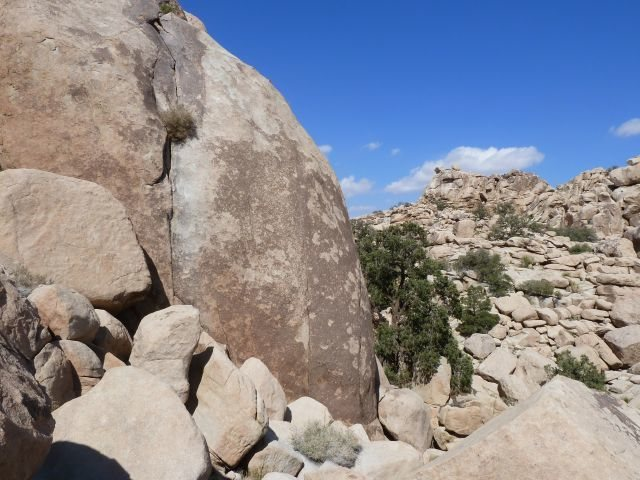 The SW face of X Factor Dome with the Rollerball Formation in the distance, Joshua Tree NP