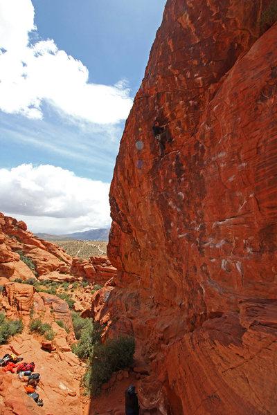 Craig high on the Gulch. Great climb.