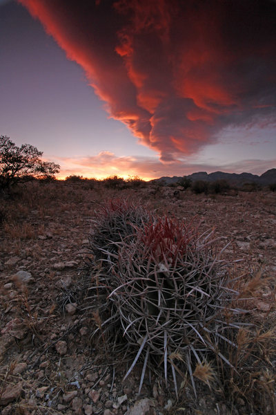 Beautiful sunsets.<br> <br> http://benjamin-mackall.squarespace.com