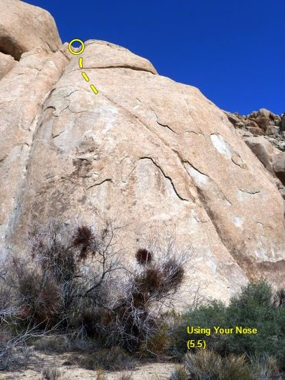 Using Your Nose (5.5), Joshua Tree NP