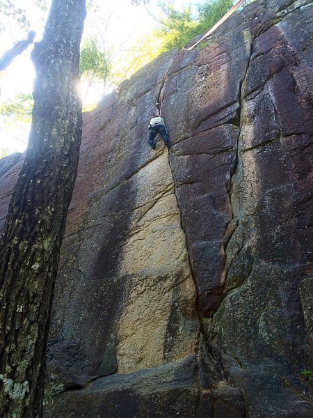 Rock Climbing Photo: Melissa on Chicken Delight