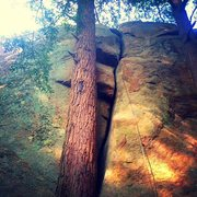 Rock Climbing Photo: Double Chin 5.6