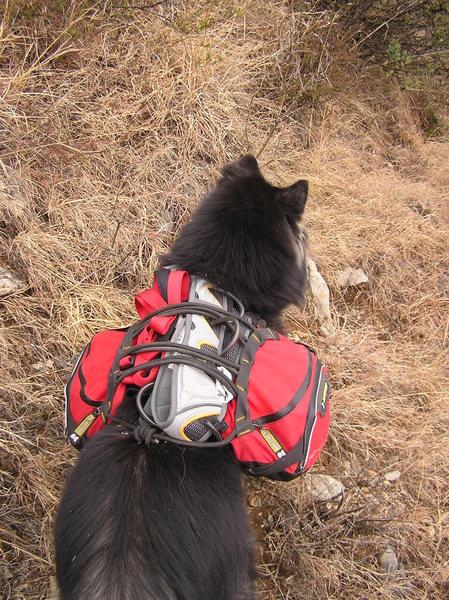 Rock Climbing Photo: Carrying climbing gear