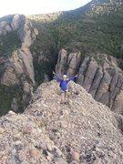 Rock Climbing Photo: Pika topping off on Tachycardia (2012)