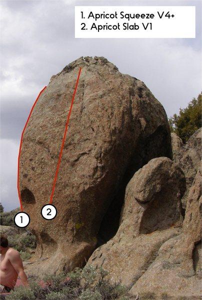Rock Climbing Photo: Apricot.