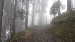 Rock Climbing Photo: The hike up to Mürren from Lauterbrunnen.